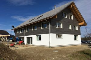 NUR-HOLZ House in Switzerland near Zurich